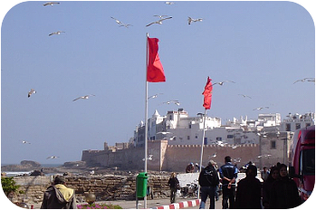 Masticating Morocco At Essaouira